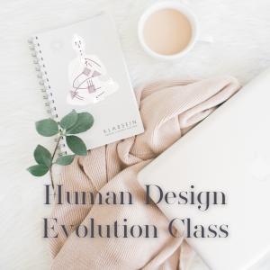 Human Design Ausbildung
